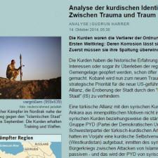 Der Standard: Analyse der kurdischen Identität